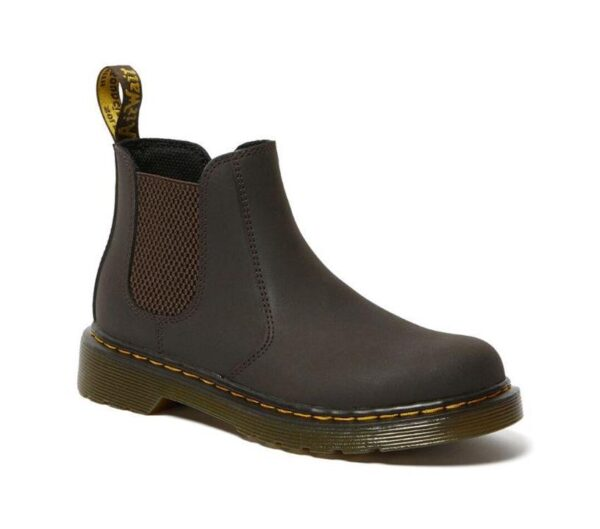 Dr Martens 2976 Junior Leather Chelsea Boots Gaucho