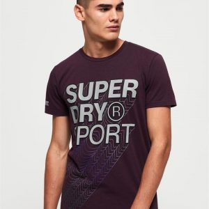 Superdry Sport Core Gradient Graphic Ss Tee Fig Marle