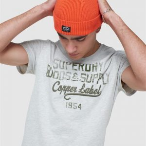 Superdry Ss Workwear Graphic Tee Off White Marle