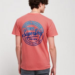 Superdry Ticket Type Oversized Fit Tee Skate Pink