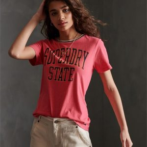 Superdry State Ringer Entry Tee Coral Over Dyed Marl