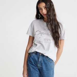 Superdry Vl Tonal Embroidery Entry Tee Ice Marle